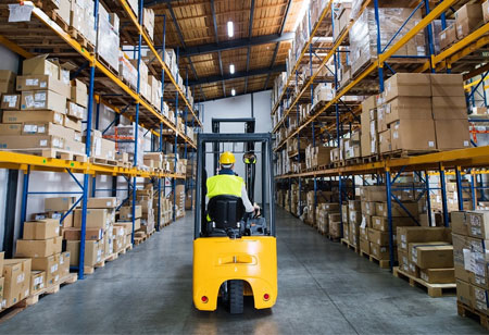 What are the Types of Warehouse Management Systems?